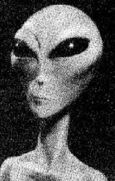 little-grey-alien